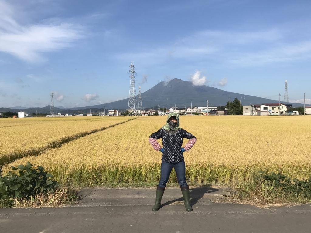 f:id:takada128:20170927210027j:plain