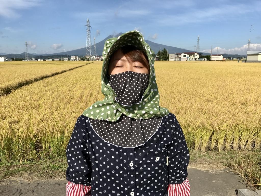 f:id:takada128:20170928184500j:plain