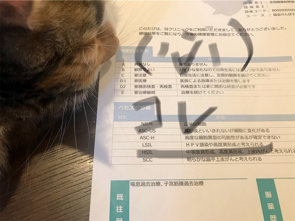 f:id:takadamanami0318:20190819205706j:image