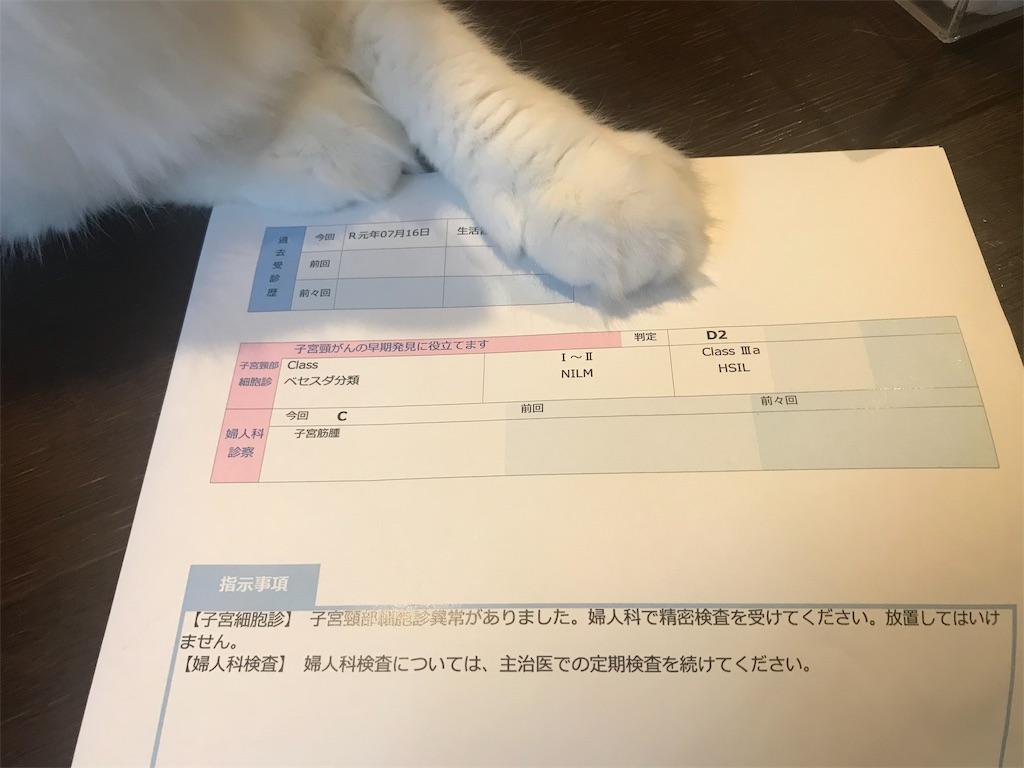 f:id:takadamanami0318:20190819205711j:image