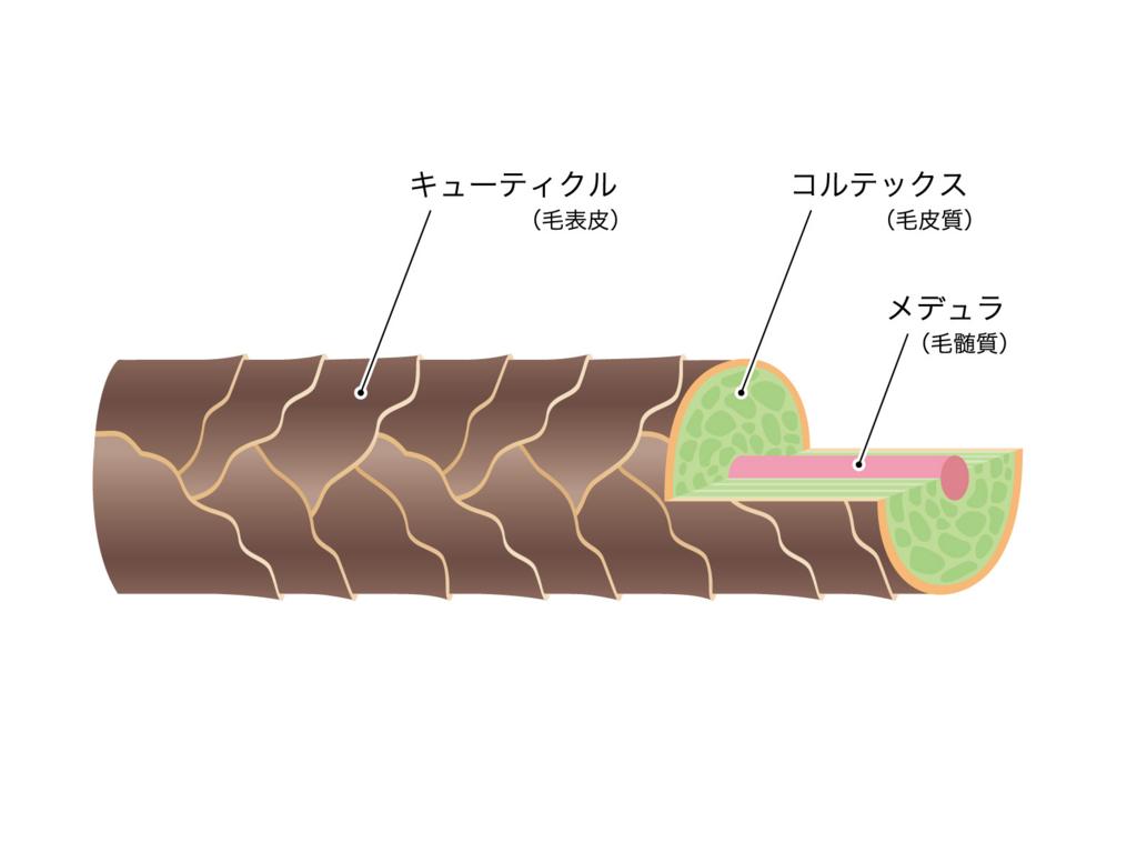 f:id:takafumiimai:20180108172717j:plain