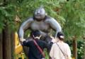京都新聞写真コンテスト パワーをください