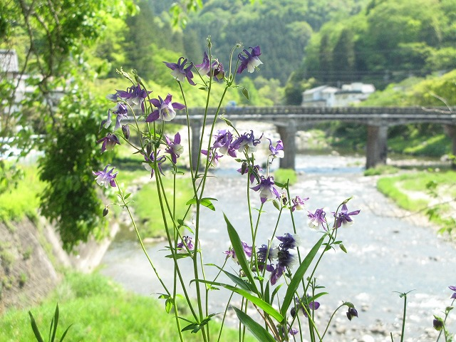 f:id:takagikofu:20130524164448j:image:w400