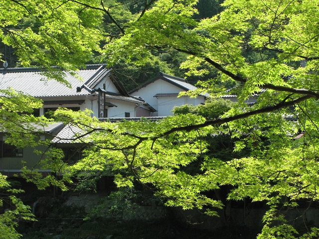 f:id:takagikofu:20130524164450j:image:w400