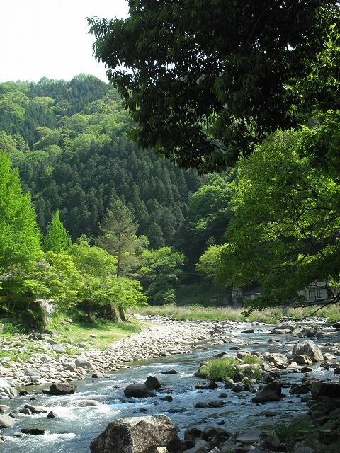 f:id:takagikofu:20130524164508j:image:w400