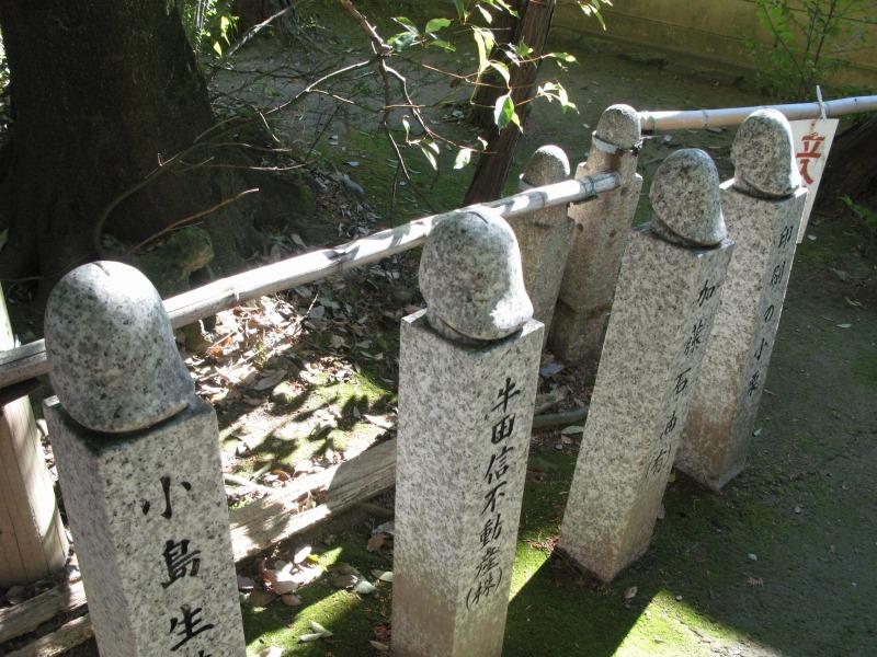 f:id:takagikofu:20140128170607j:image:w400
