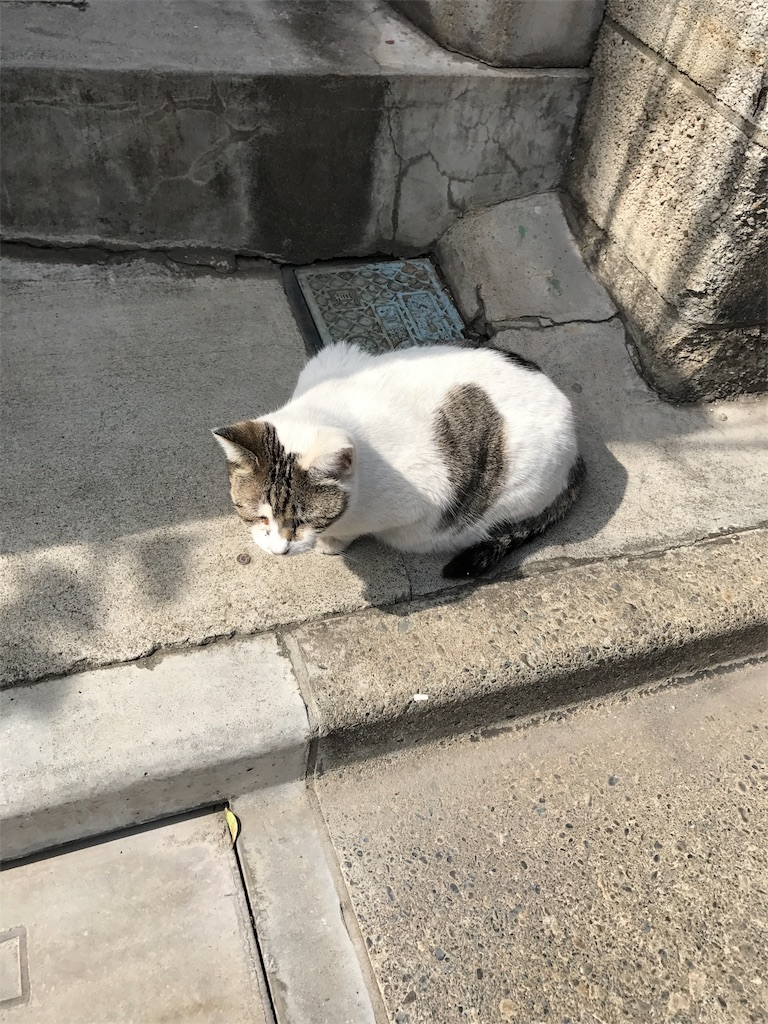 f:id:takahashi-real:20170325143502j:image