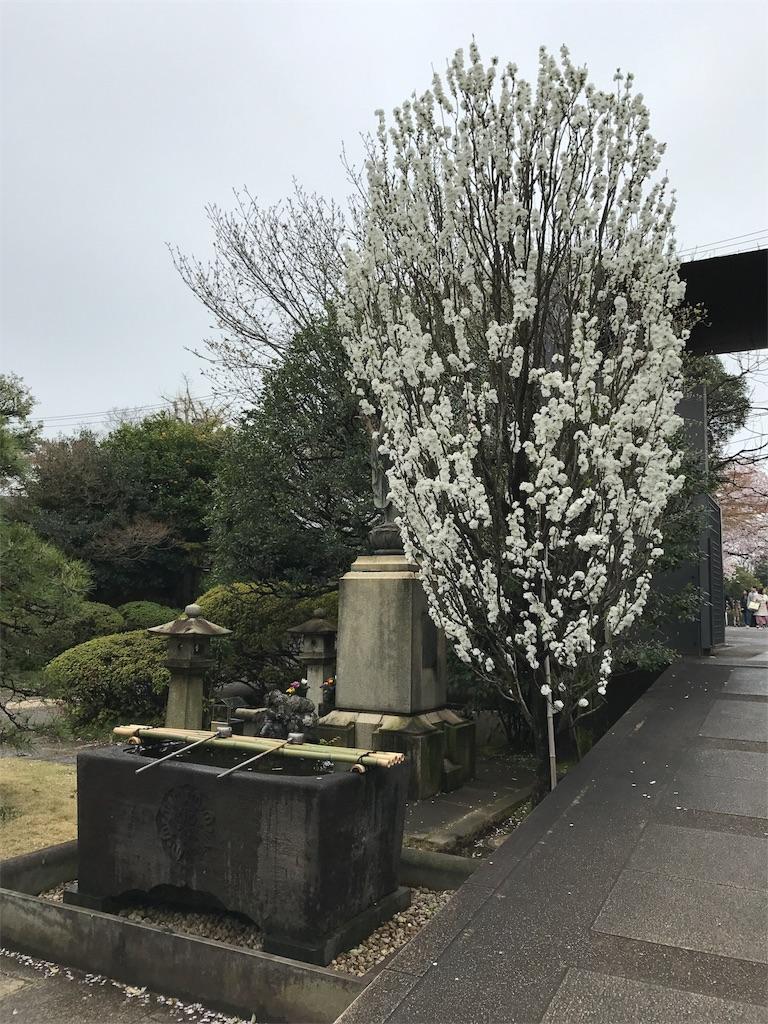 f:id:takahashi-real:20170408222456j:image