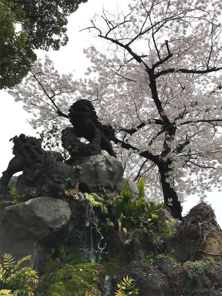 f:id:takahashi-real:20170408222722j:image