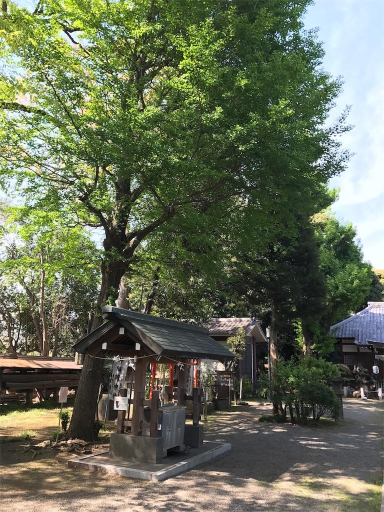 f:id:takahashi-real:20170425161243j:image