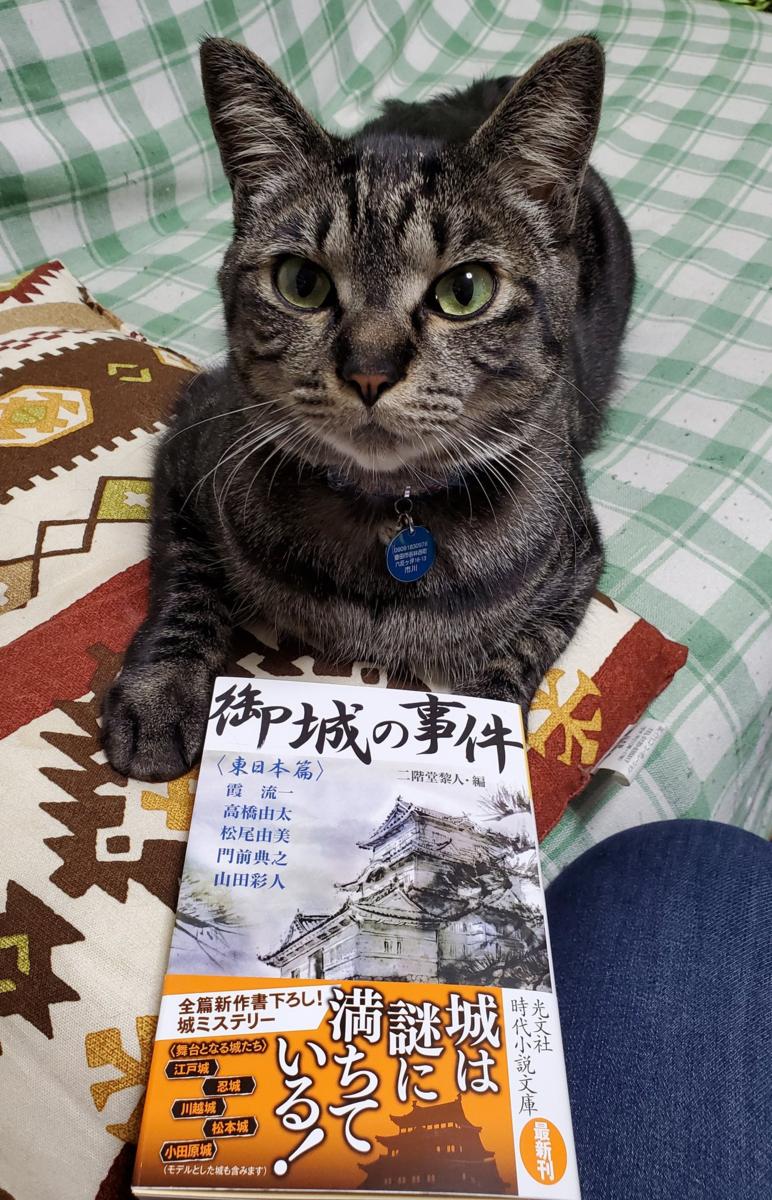 f:id:takahashiyuta2:20200415100346p:plain