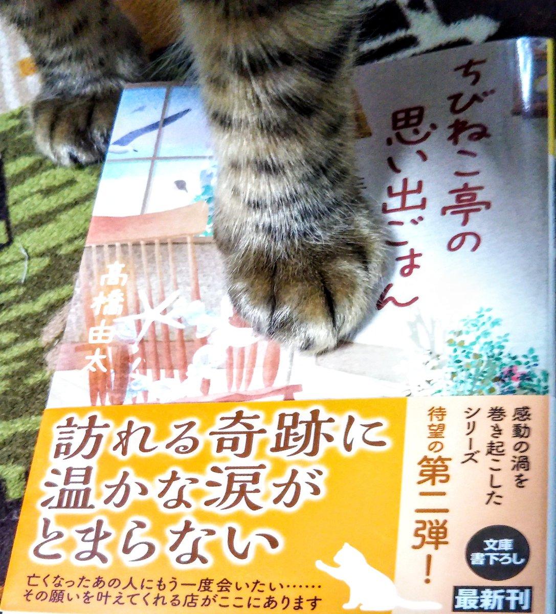 f:id:takahashiyuta2:20201210061745p:plain