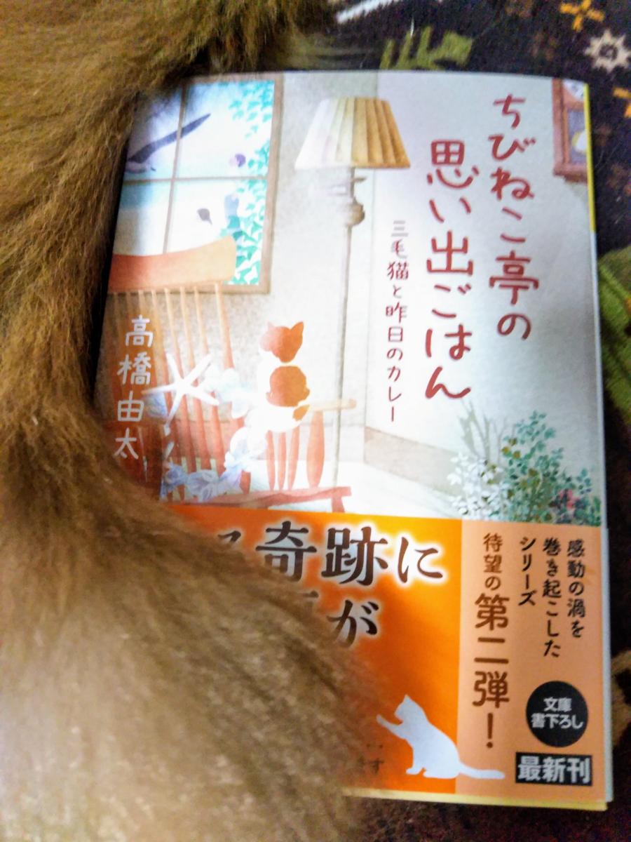f:id:takahashiyuta2:20201220063234p:plain