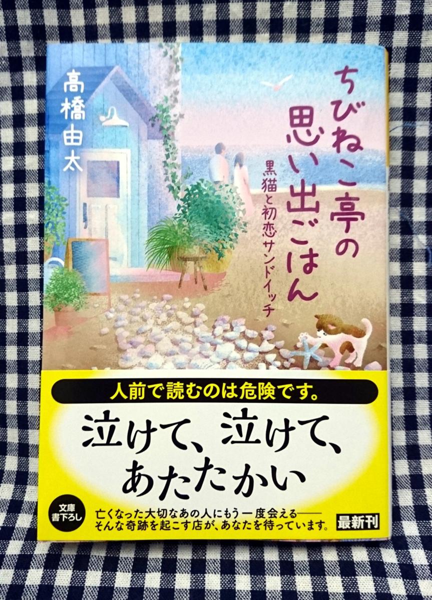 f:id:takahashiyuta2:20201223054319p:plain