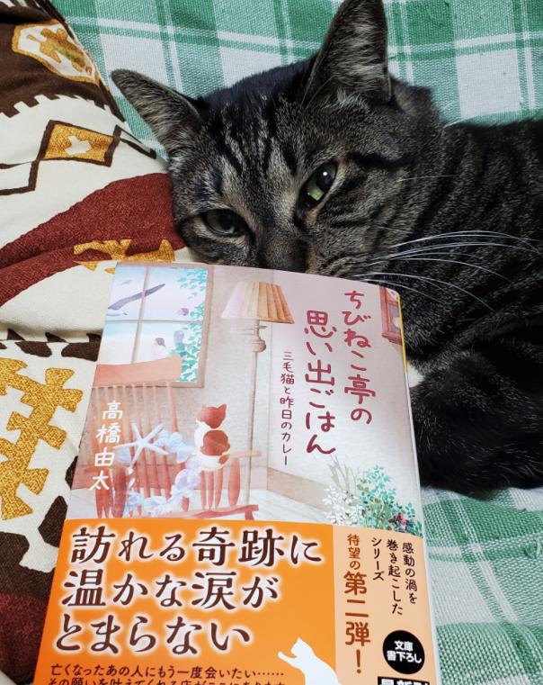 f:id:takahashiyuta2:20201225055713p:plain
