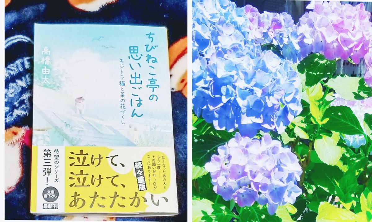 f:id:takahashiyuta2:20210630072231p:plain