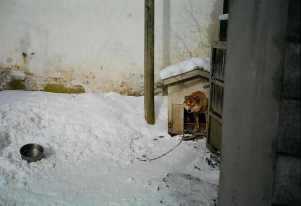 f:id:takahasiii:20110112215339j:image