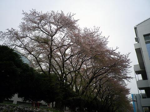 f:id:takahikonojima:20140505104739j:plain