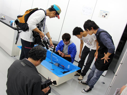 f:id:takahikonojima:20141105162726j:plain