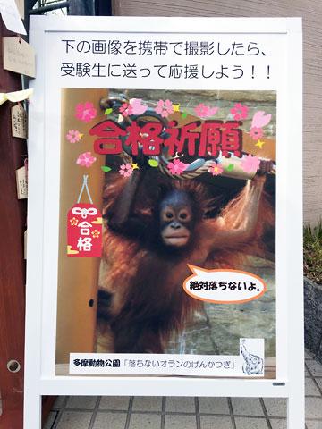 f:id:takahikonojima:20150118130011j:plain