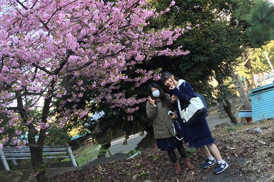 f:id:takahikonojima:20150306022146j:plain