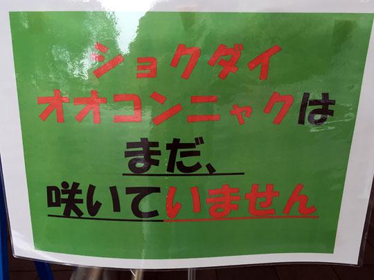 f:id:takahikonojima:20150907192958j:plain