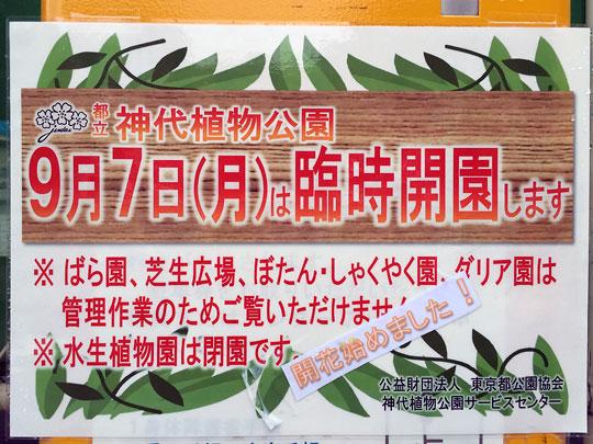 f:id:takahikonojima:20150907193036j:plain