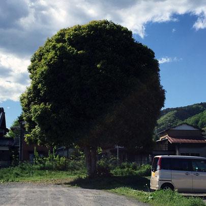 f:id:takahikonojima:20160429165323j:plain