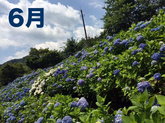 f:id:takahikonojima:20160706225839j:plain