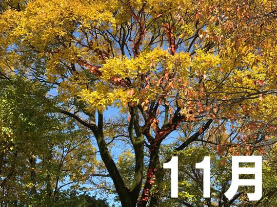 f:id:takahikonojima:20161128152224j:plain