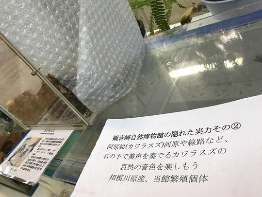 f:id:takahikonojima:20161227153118j:plain