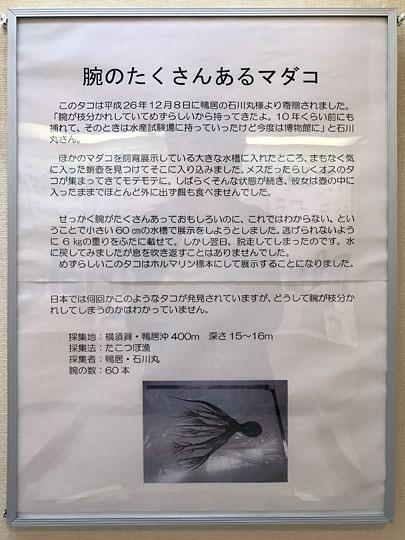 f:id:takahikonojima:20161227153134j:plain