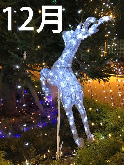 f:id:takahikonojima:20161228165533j:plain