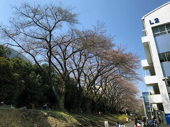 f:id:takahikonojima:20170404113002j:plain