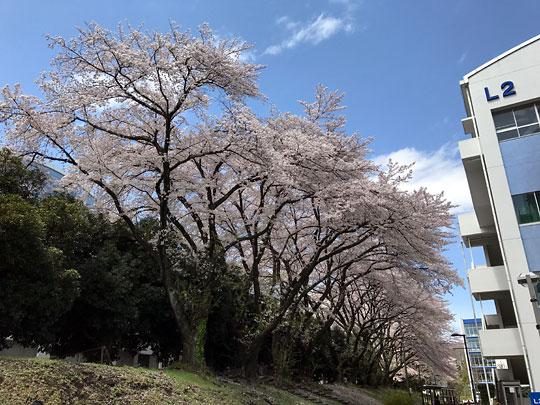 f:id:takahikonojima:20170420165442j:plain