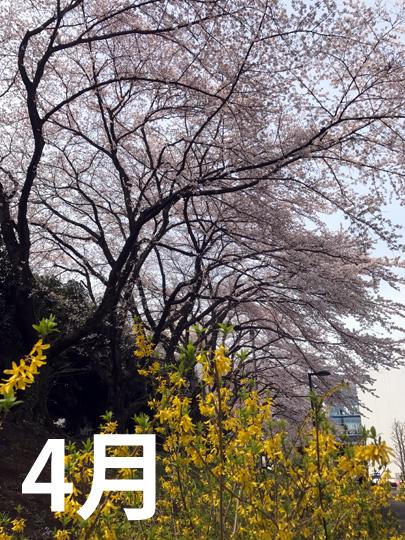 f:id:takahikonojima:20170506102848j:plain