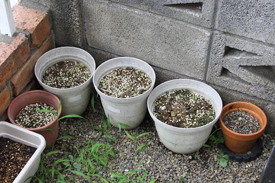 f:id:takahikonojima:20170812073609j:plain