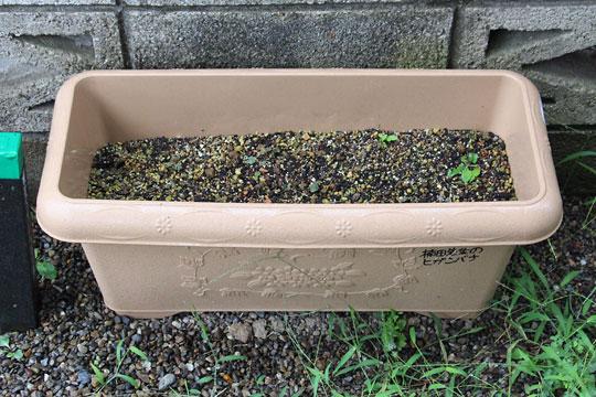 f:id:takahikonojima:20170902175852j:plain