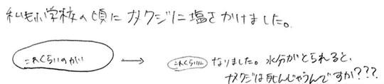 f:id:takahikonojima:20170921171745j:plain