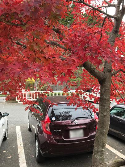 f:id:takahikonojima:20171218152548j:plain
