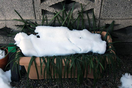 f:id:takahikonojima:20180126143201j:plain