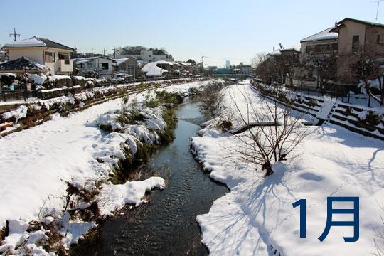 f:id:takahikonojima:20180130145155j:plain