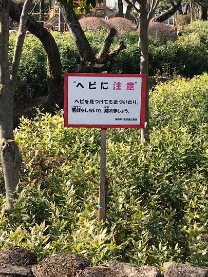 f:id:takahikonojima:20180215170447j:plain