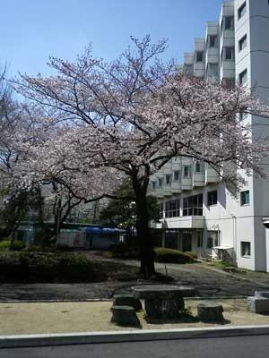 f:id:takahikonojima:20180815164933j:plain