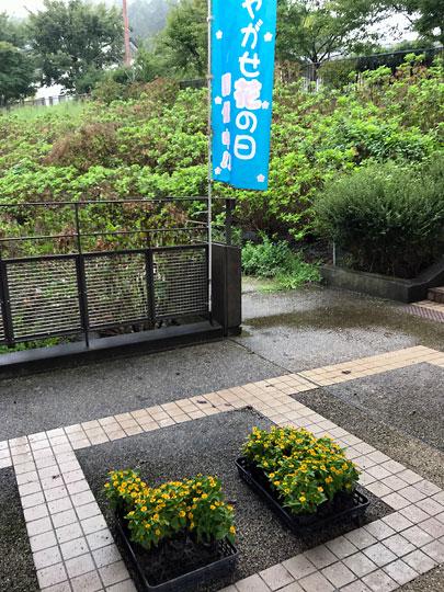 f:id:takahikonojima:20181002170057j:plain