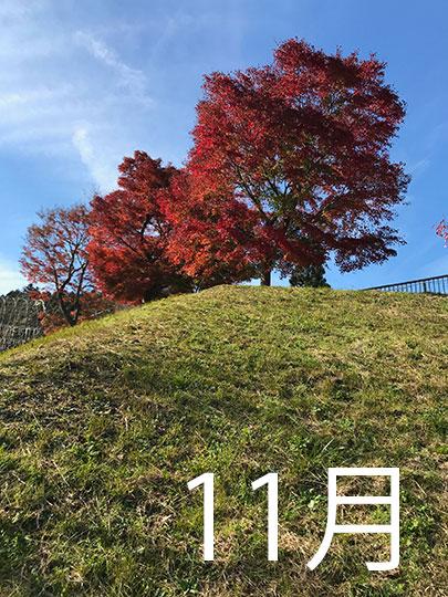 f:id:takahikonojima:20181130222343j:plain