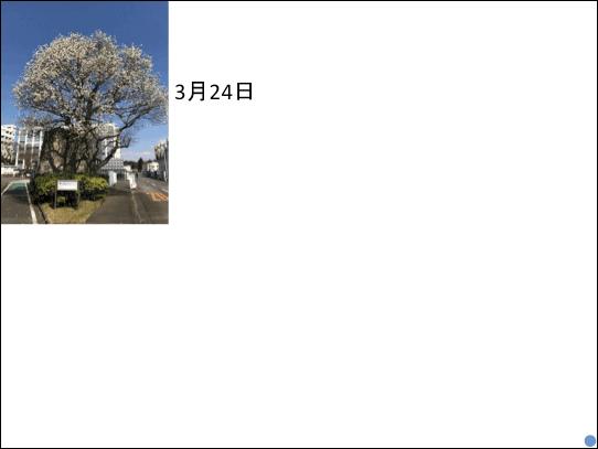 f:id:takahikonojima:20181223141123p:plain