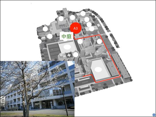 f:id:takahikonojima:20181223141854p:plain