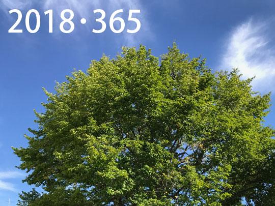 f:id:takahikonojima:20190101132434j:plain