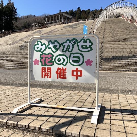 f:id:takahikonojima:20190119103243j:plain